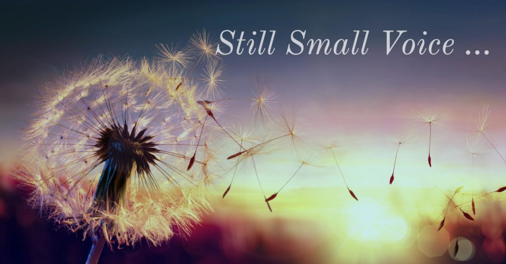 still small voice dandelion spikes being blown in the wind with a sunset in the background